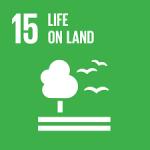 SDGs15